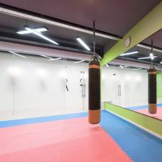 Kampfsport-Spiegel