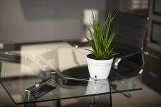 Bürotisch aus ESG Glas Klar